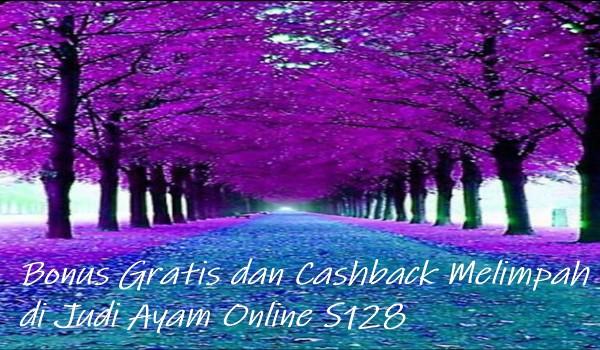 Bonus Gratis dan Cashback Melimpah di Judi Ayam Online S128